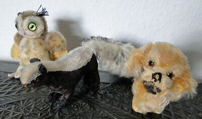 3x antikes Steiff Tier Hund Peky Eule Stinktier Stunk Antique Steiff Animals Set