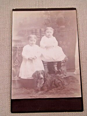NICE 1800s ID CABINET CARD IMAGE OF TWO YOUNG GIRLS & FAITHFUL DOG