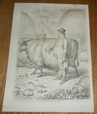 c1847 Antique Caricature Print by James Gillray Fat Cattle & A Welch Tandem