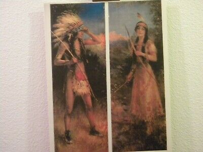 Native American Indian Warrior Maiden art print beautiful bow arrow
