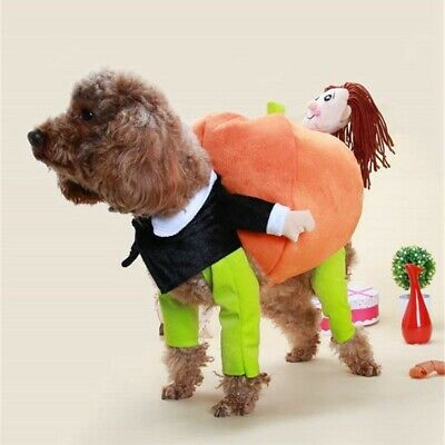 Pet Funny Cosplay Costume Doll Hold Pumpkin Dog Cat Halloween Xmas Clothing Suit