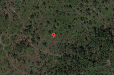 3.73 Acres, Frostproof, Foreclosure Ready, Buildable, ATV, RV Use, Mobile, etc