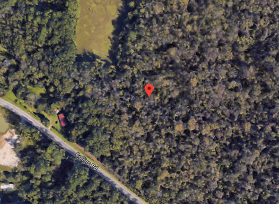 3.02 Acres, Jacksonville, Foreclosure Ready, Starting Bid $0.99, Sewer, Electric