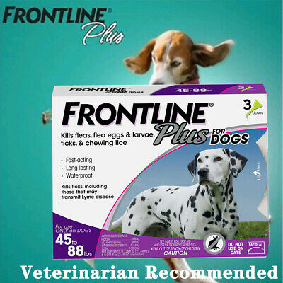 Frontline Plus for Dogs Large Dog(45-88 lbs)Flea and Tick Treatment, 3 Doses