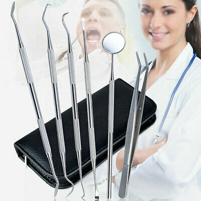6Pcs Stainless Steel Dental Tooth Pick Probe Set Kit Teeth Clean Hygiene Tool