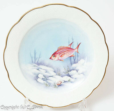 Royal Worcester China Ronald van Ruyckevelt Plate Painted with a Squirrel Fish