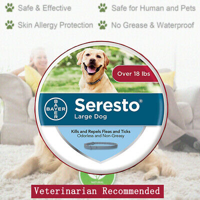 Bayer Seresto Collar for Large Dogs Over 18 lbs 8 Months Flea and Tick Control