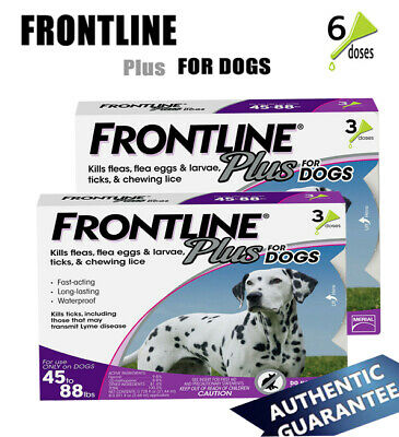FRONTLINE Plus for Dogs (45-88 lbs) Flea & Tick Treatment 6 Doses