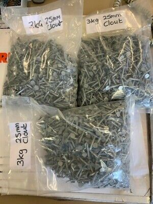9Kg X 25Mm Galvanised Elh Nails