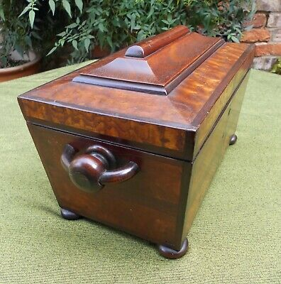 GOOD ANTIQUE MAHOGANY SARCOPHAGUS TEA CADDY~W/BURR & FIGURED TIMBERS~EARLY C19th