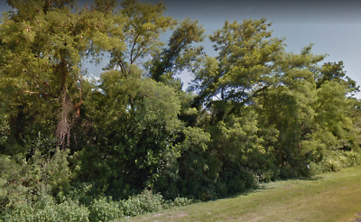 3.40 Acres, Lake Alfred, Foreclosure Ready ASAP, Road Frontage, Utilities,