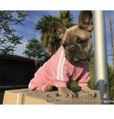 Cute Small Pink Adidog Hoodie For Dogs Outfits Apparel Cheap A15