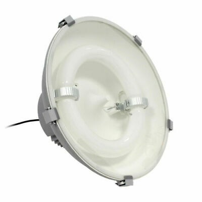 Induktions-Hallenstrahler 250W 21250 Lumen Hall Lamp Replacement for Hql Hqi LED