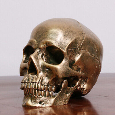 Human Bronze Resin Skull Model Medical Halloween Realistic 1:1 Statue D Y!A