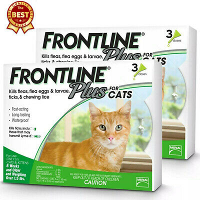 Frontline Plus for Cats and Kittens Flea and Tick 6 Doses -1.5 pounds and over
