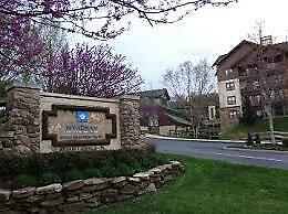 Wyndham Smoky Mountain 105,000 Odd year points
