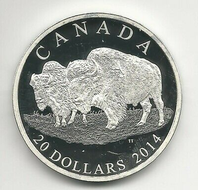 2014 'The Bison- A Family at Rest' Proof $20 Silver Coin 1oz SILVER RCM COIN!