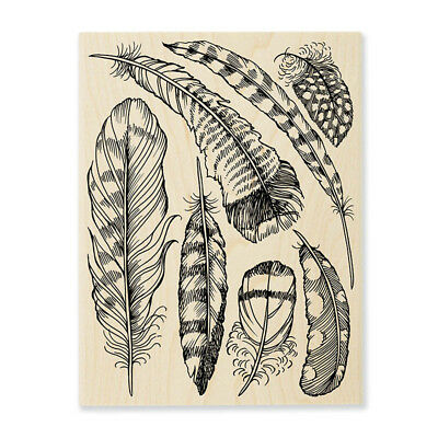 STAMPENDOUS RUBBER STAMPS ASSORTED FEATHERS NEW wood STAMP