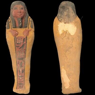 EGYPTIAN HIEROGLYPHIC SHABTI (8) Large Over 17 cm !!!!