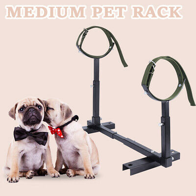 Fully Adjustable Grooming Breeding Stand W// Collars Stainless Steel trim nails