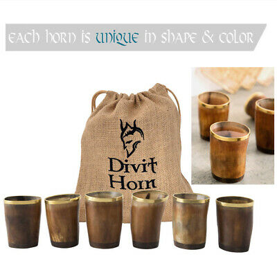 Viking Drinking Horn Shot Glass [Set of 6] Authentic Medieval Cup Christmas GIFT