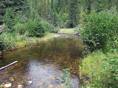 Idaho Gold Mine Placer Claim Prime Mining St Marie River Mid Fork Panning Sluice