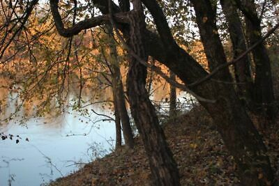 Mississippi Land 150' River Front Beautiful Lot In City Limits  Walthall Bridge