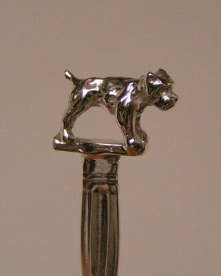 Salt Spoon Sterling Silver (  Bull Dog   )
