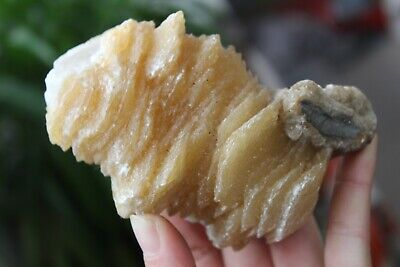 TOP!!! 500g NATURAL yellow Calcite flower crystal rough cluster specimen J15