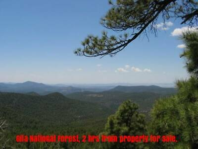 $1 One Acre…Life in solitude, south of Belen, NM (Seller Financed, $79 a month)