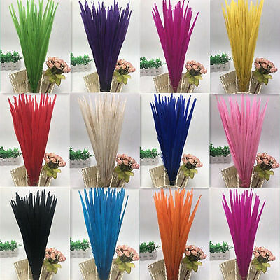 Beautiful10-100pcs natural pheasant tail feathers 10-18 inches / 25-45 cm