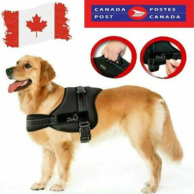 New Pet Dog Cat Puppy Soft Leash Adjustable No-Pull Dog Harness Braces Clothes