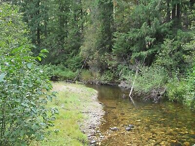 Gold Mine Mid Fork St Marie River Idaho Placer Mining Claim Creek Panning Sluice