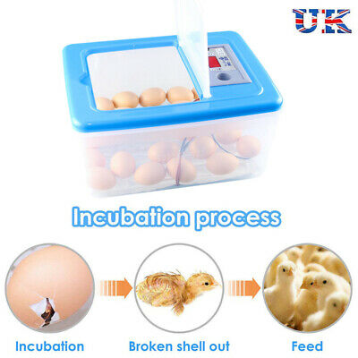 UK Egg Incubator Poultry Digital Chicken Egg Hatcher 32 Eggs Hatching Machine