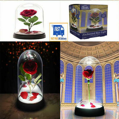 Beauty And The Beast Disney Enchanted Rose White Box Frame Picture Lamp Light