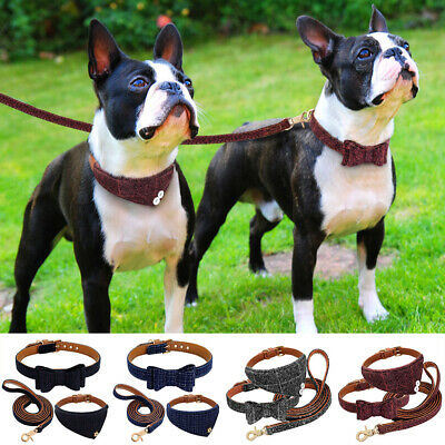 3Pc Puppy Collar Bowknot Kitten Cat Collars Soft Leather Leash For Small Mid Pet
