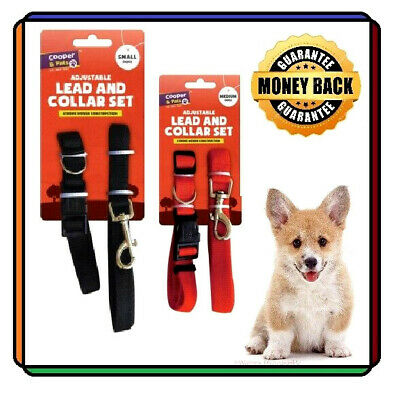 Dog Lead and Collar Set Red Black Medium Small Size Adjustable 24.5 cm to 43 cm