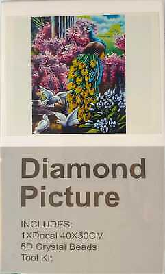 NEW Diamond Picture 5D Crystal Beads Decal 40x50cm Tool Kit Art Canvas Set Gift!