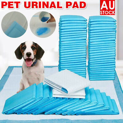 New Pet Dog Cat Training Pads Absorbent Indoor Puppy Toilet Pee Pad 200pk/400pk