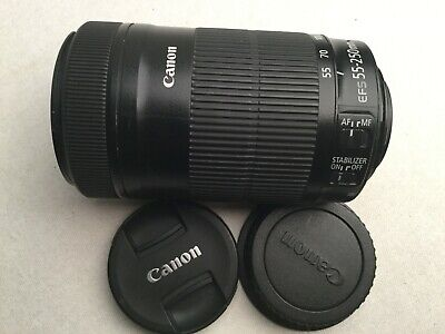 Canon EF-S 55-250mm f/4.0-5.6 STM IS Lens
