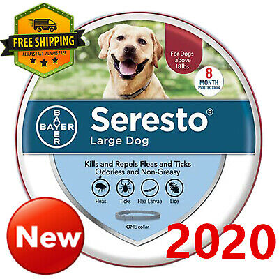 Bayer Seresto Flea and Tick Collar for Large Dog over 18 Ibs,8 Month Protection