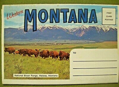 WESTERN MONTANA - Vintage Souvenir Fold-Out Postcard with 14 Scenic Views