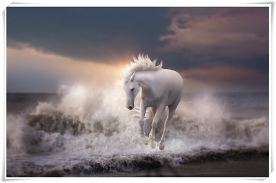 Poster Wall Art Printing Thin Silk Fabric - White Horse 02 Animal 32 x 24 Inch