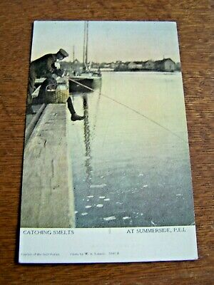 Summerside, Prince Edward Island, Canada-Color Postcard-Unposted-Smelts