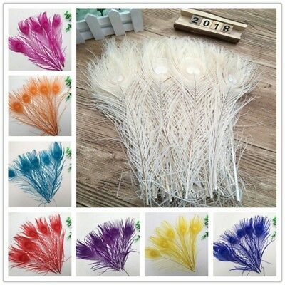 10 pieces beautiful peacock tail feather eyes 10-12 inches / 25-30 cm