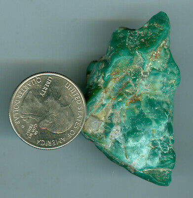 37 Grams of Stabilized American Turquoise Fox MIne