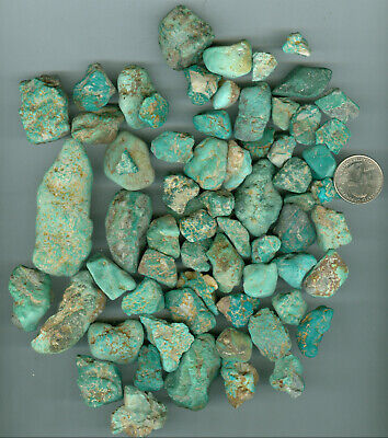 1 pound of Stabilized American Turquoise Green Tree Turquoise