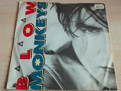 """The blow monkeys  It doesnt have to be this way  7"""" Hit Record"""