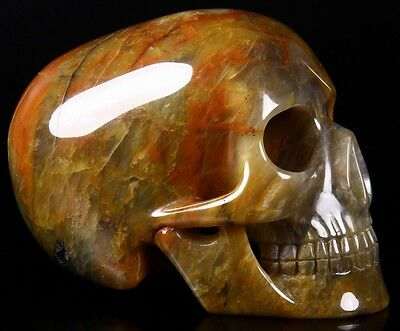 """Huge 5.3"""" COLORFUL AGATE Carved Mitchell-Hedges Crystal Skull Replica, #262"""