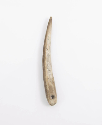 Prehistoric Neolithic, Capsian Culture Awl